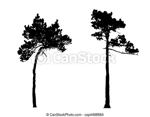 Drevo Silueta Borovice