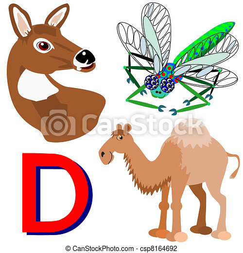 d deer dragonfly dromedary illustration of animals that start