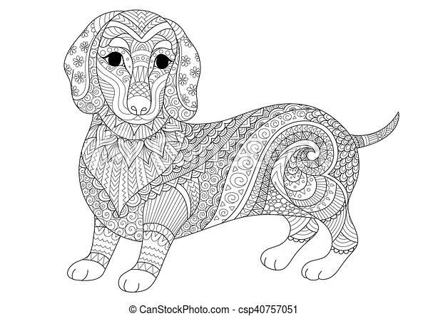 Dachshund Dog Zendoodle Design Of Puppy For Adult