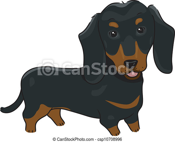 illustration featuring a cute and friendly dachshund eps vectors rh canstockphoto com dachshund dog clipart dachshund clipart silhouette