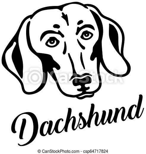 Dachshund head with name - csp64717824