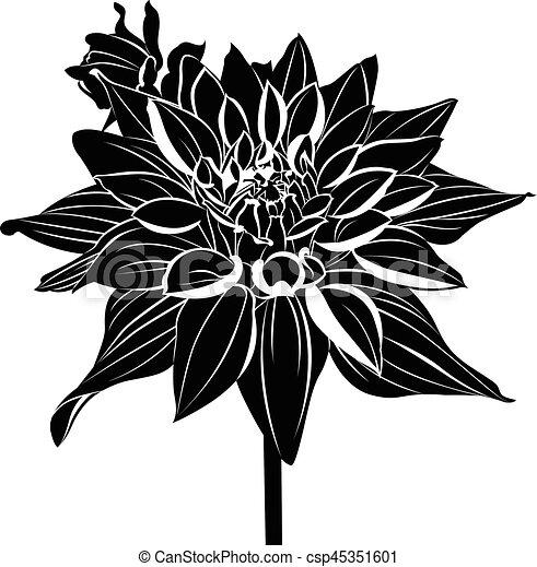 Vector Stock - Black and white dahlia flower. Stock Clip Art gg81225403 -  GoGraph