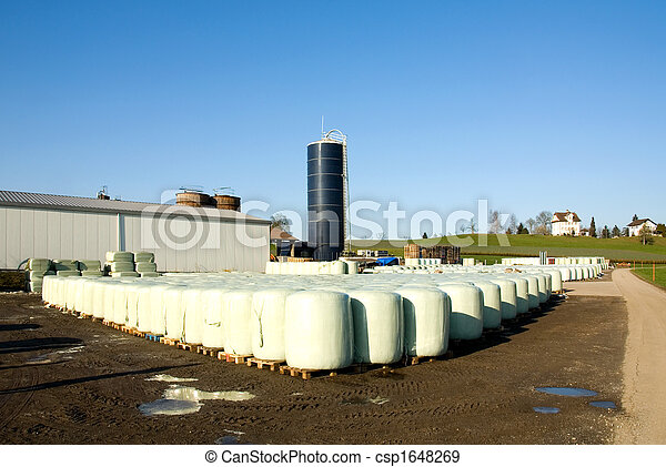 Dairy Farm - csp1648269