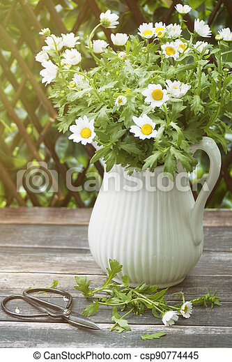Daisies in jug on table - csp90774445
