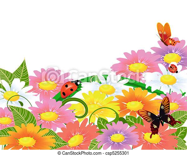 Daisies - csp5255301
