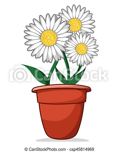 Daisy - csp45814969