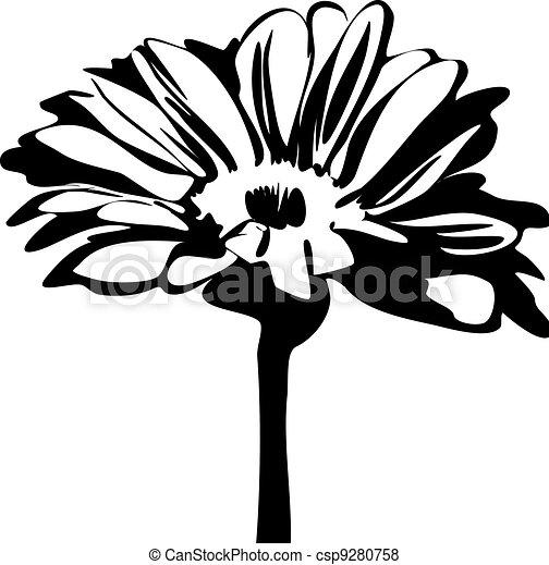 daisy flower on the stalk - csp9280758