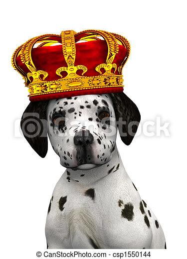 Dalmatian puppy prince - csp1550144