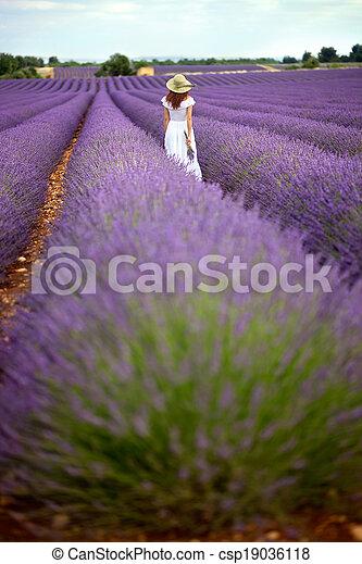 dam, gående framemot, romantisk, hatt, hon, baksida, ung, lavendel, behind., fält, violett, utsikt., klänning, vit, horizon., photographed - csp19036118