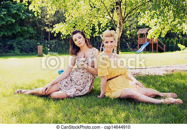 Dos damas románticas sentadas en la pradera de las flores - csp14644910