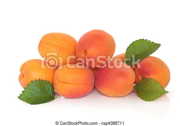damasco, fruta - csp4388711