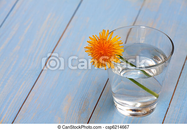 dandelion in a glass with water - csp6214667