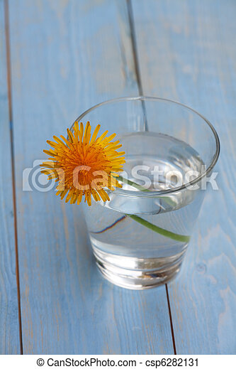 dandelion in a glass with water - csp6282131