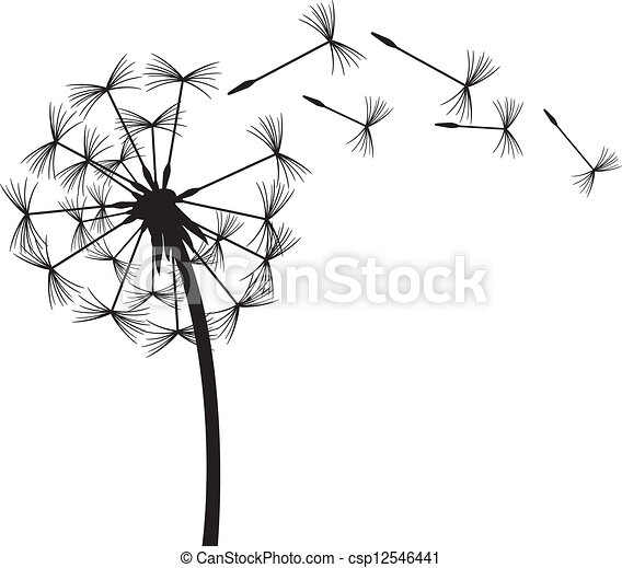 dandelion in the wind - csp12546441