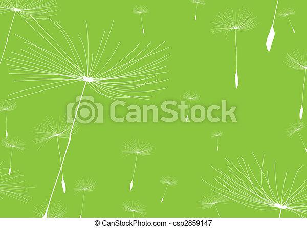 dandelion negative - csp2859147