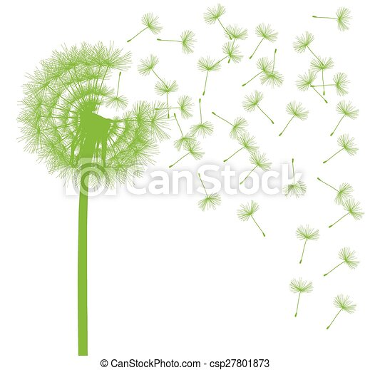 Dandelion seeds blowing away green ecology and time passing concept background - csp27801873