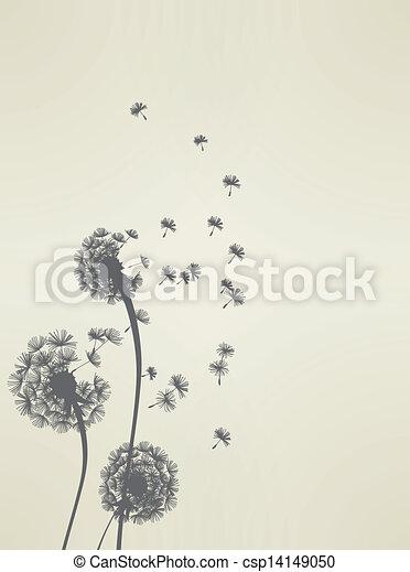 dandelion - csp14149050