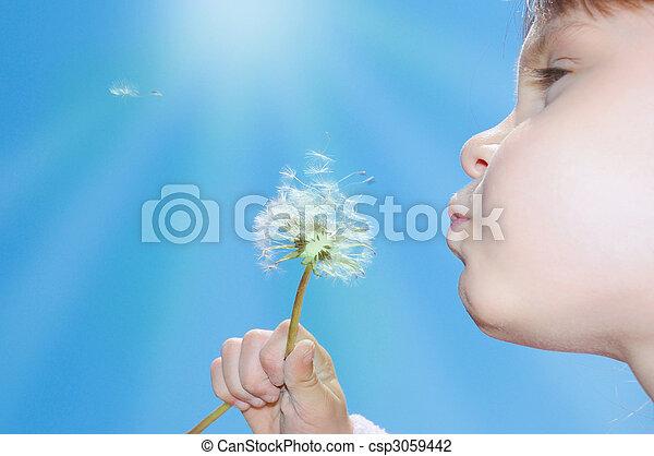 dandelion wishing blowing seeds - csp3059442