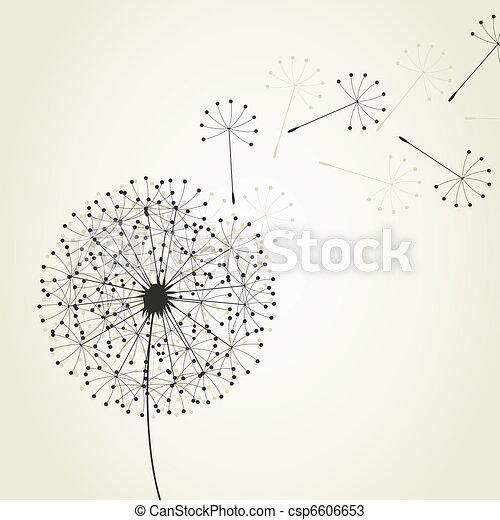 Dandelion4 - csp6606653