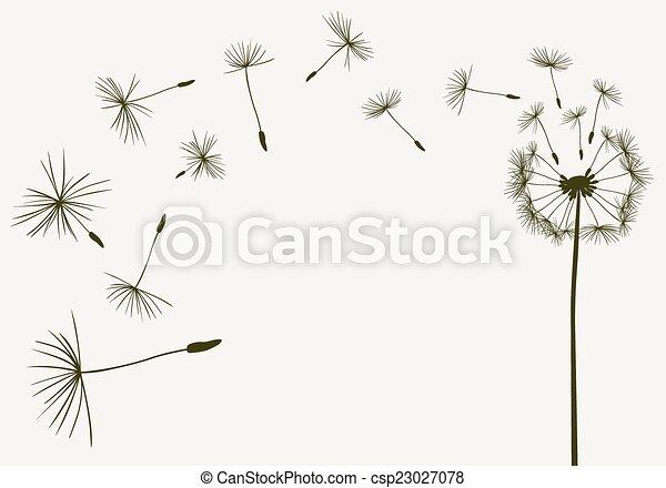 dandelions - csp23027078