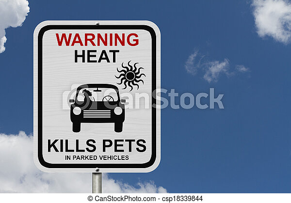 Dangers of leaving a dog in parked cars - csp18339844