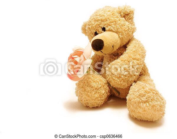 dar, rosa, teddy-urso - csp0636466