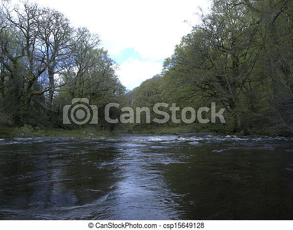 Dardo del río, dardomoor - csp15649128