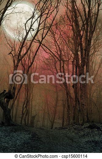dark night forest agaist full moon - csp15600114