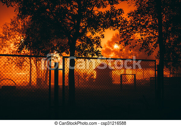 Dark silhouettes of trees and a fence. - csp31216588