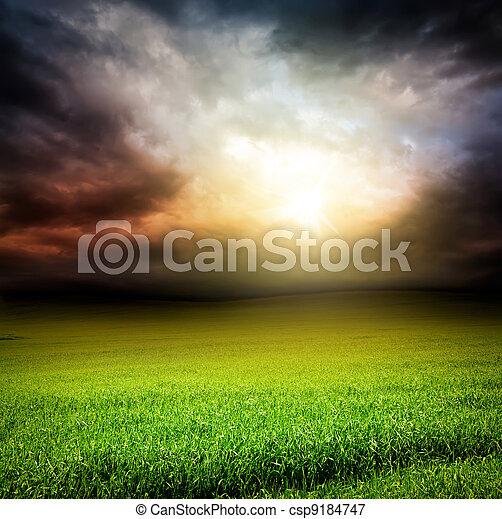 dark sky green field of grass with sun light  - csp9184747