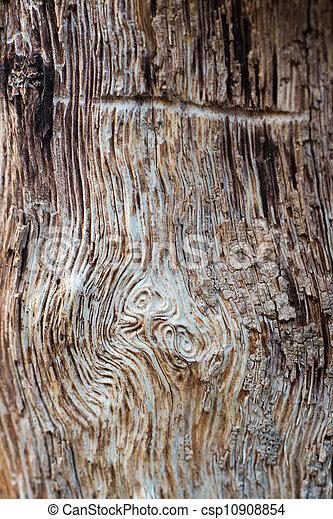 Dark Wood Background - csp10908854