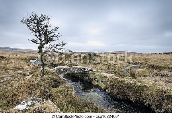 El arroyo Darmoor - csp16224061
