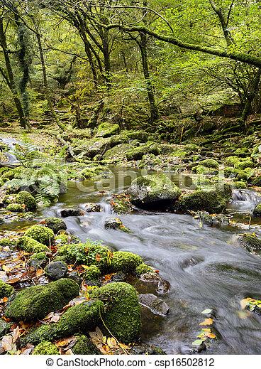 La corriente de Dartmoor - csp16502812