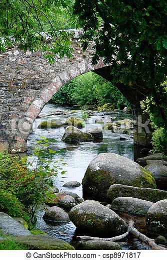 Puente en Dartmoor en Cornwall - csp8971817