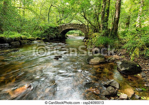 El puente Hisley en Dartmoor - csp24090013