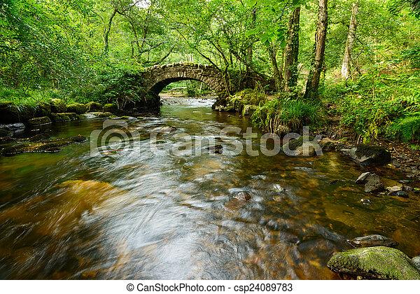 El puente Hisley en Dartmoor - csp24089783