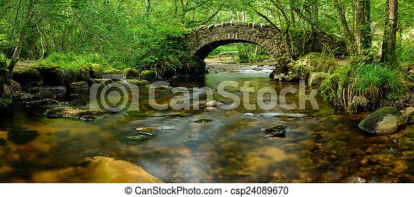 Puente Dartmoor - csp24089670