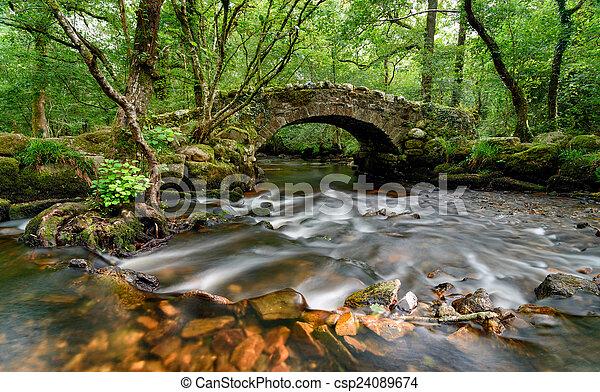 Puente Dartmoor - csp24089674