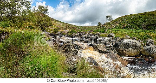 Verano en Dartmoor - csp24089651