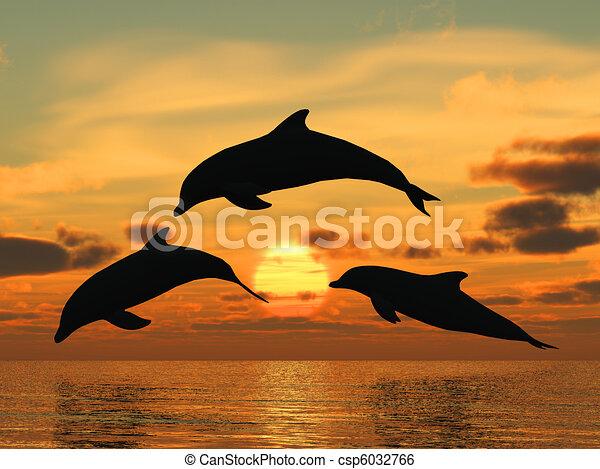 dauphin, coucher soleil, jaune - csp6032766