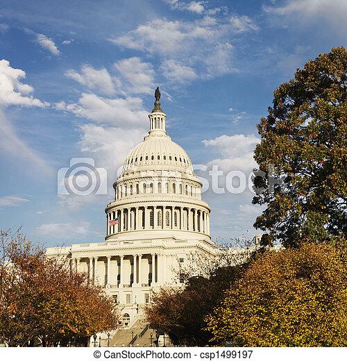 dc., 華盛頓 國會大廈, 建築物 - csp1499197