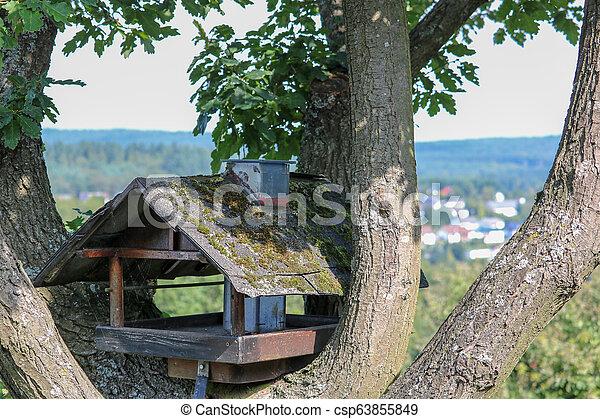Una casa de pájaros en un árbol en Alemania - csp63855849