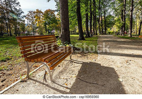 Un banco de madera vacío en Park Lane - csp16959360