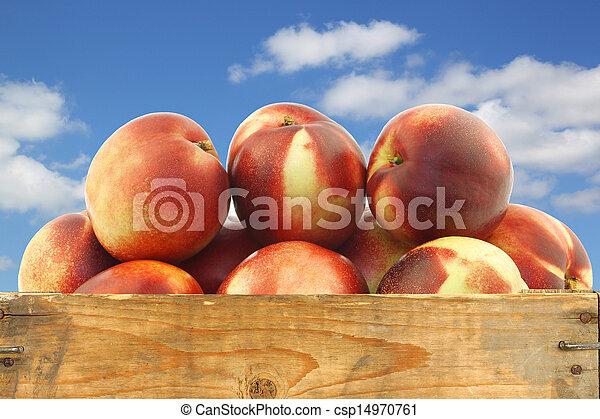 Nectarinas frescas en una caja de madera - csp14970761