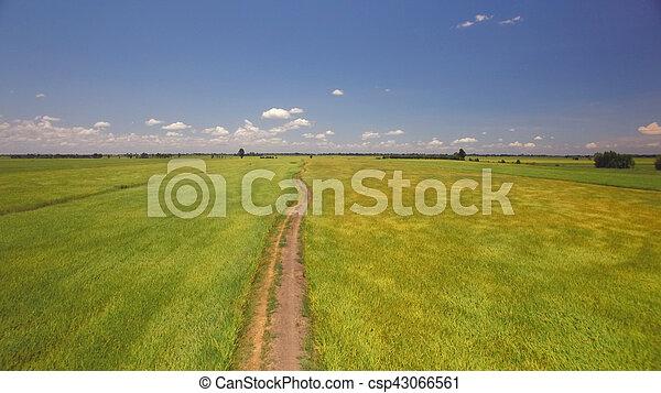 Aventura fuera de las vías en el campo de cultivo - csp43066561