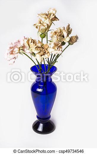 Dead Roses In Blue Vase On The White Background