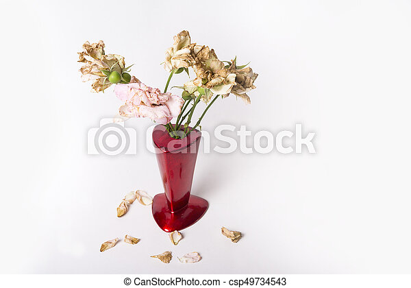 Dead Roses In Red Vase On The White Background