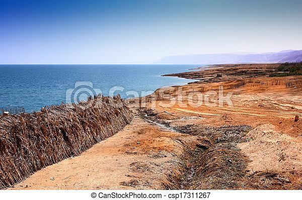 Dead Sea landscape - csp17311267