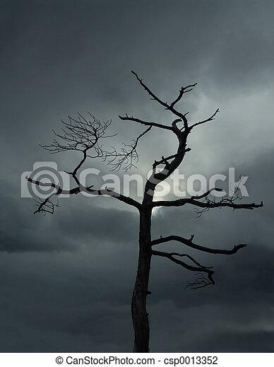 Dead tree - csp0013352