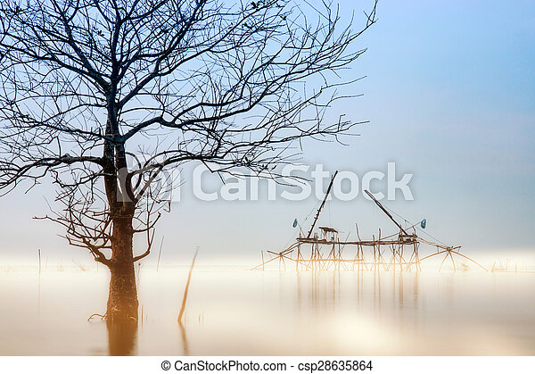 Death tree in the morning and mist over the lake. - csp28635864